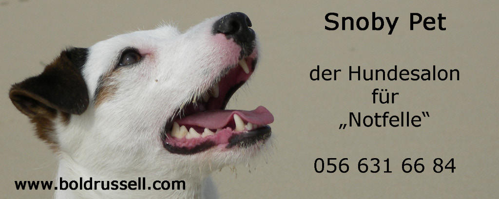 Hundesalon Snoby Pet